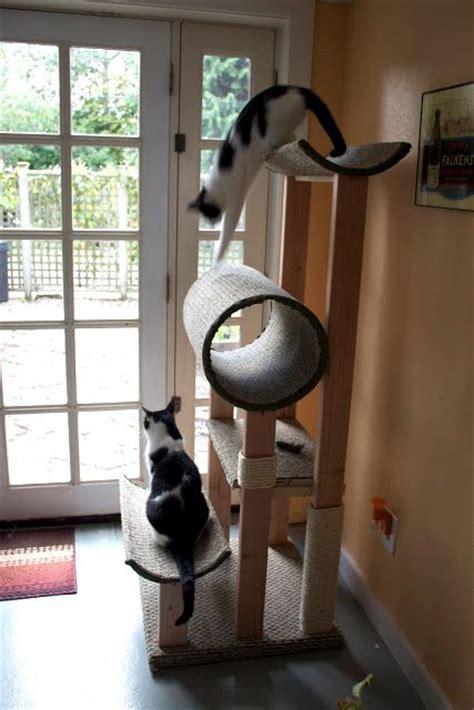 cat condo   fuzzy feline  cats