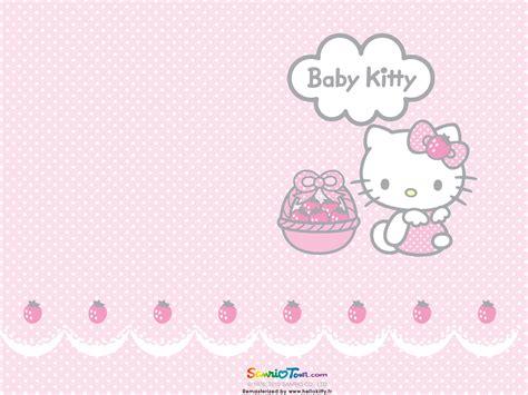 baby  kitty wallpaper wallpapersafari