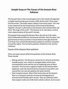 Pollution a problem essay