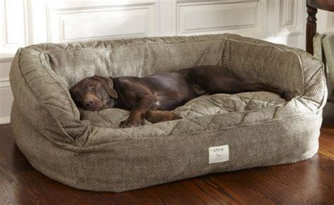 great dane beds canada luxury large beds memory foam on home design