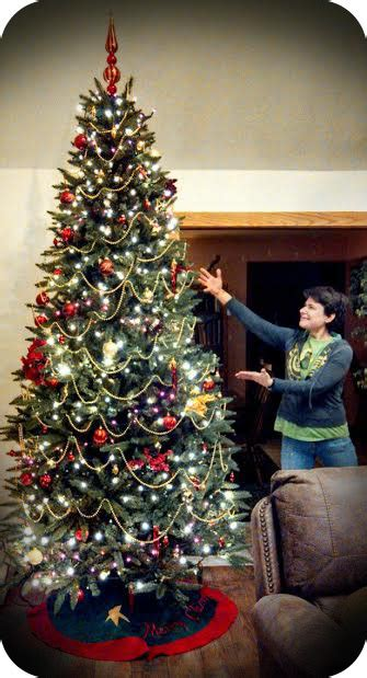 28 best whats the meaning of a christmas tree amazing