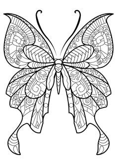 FREE coloring pages (With images) | Butterfly coloring