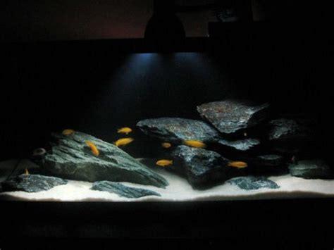 Aquascaping Cichlid Aquarium by Aquascape Idea Lake Malawi Mbuna Aquarium Fish