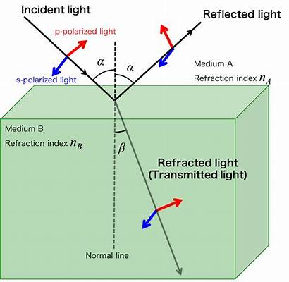 Reflected Fresnel Equations Incident Transmitted Physics Figure