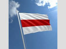 Belarus old Flag for sale Buy Old Flag of Belarus The