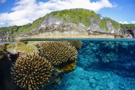 Dive Niue, Diving Tours