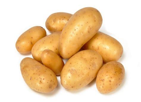 pomme de terre en chambre pomme de terre