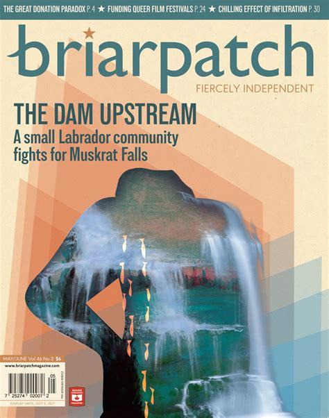 Briarpatchs Growth Spurt Briarpatch Magazine