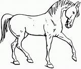 Coloring Horse Pages Fun Printable Head sketch template