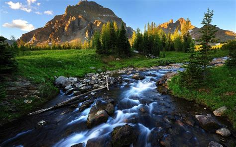 River Stream Background Wallpaper 03735 : Wallpapers13.com