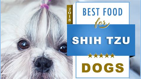 top  recommended  foods   shih tzu