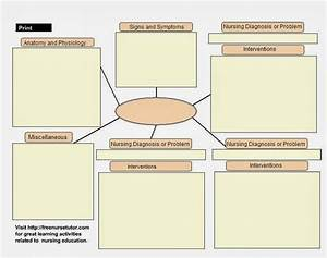 search results for blank concept map for nursing students With nursing concept maps templates