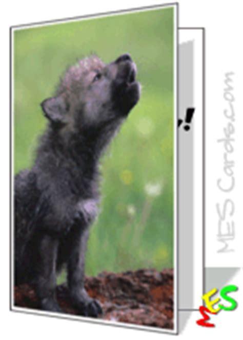 card maker lone wolf  winter