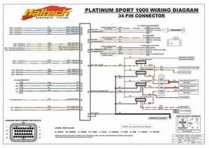 Platinum Sport 1000 Wiring Diagram
