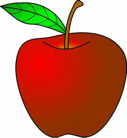 Apple Mansanas Clipart Clip Clker Transparent Vector