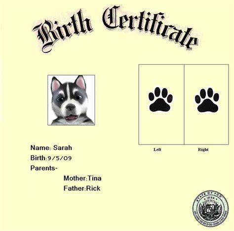 dog birth certificates dog birth certificate roybvanegas printable pet birth