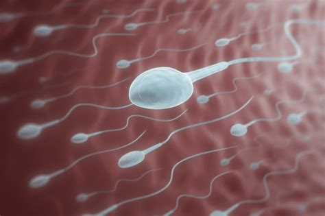 Male Contraceptive Involves Injection Your Balls