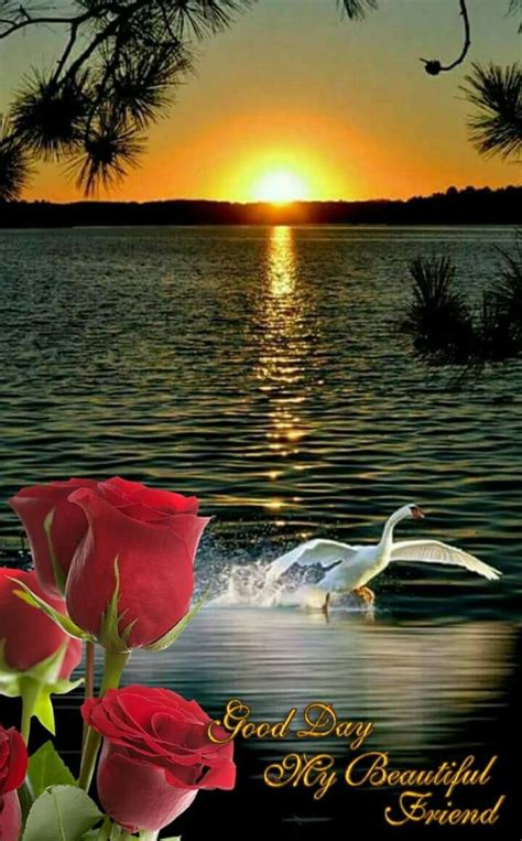 hermoso fotografia paisaje fotos animadas de amor