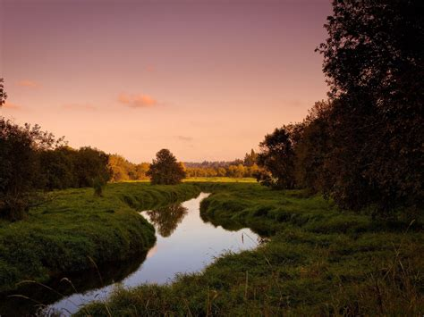 Trees River Channel Grass Summer Beautiful Nature Hd