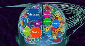 Test   U00a1el Color Que Elijas De La Rueda De Emociones