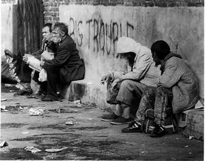 Cats and Humans- The Homeless Populations in Panama City ...