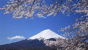 Mount Fuji / Snow Covered / Cherry Blossom / Japan HD