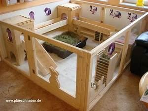 Maison Pour Lapin : casa de coelho pinteres ~ Premium-room.com Idées de Décoration