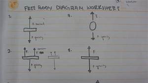 Amira U0026 39 S School Blog  Free Body Diagram Worksheet