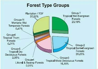 Pie chart showing different types of forests in our