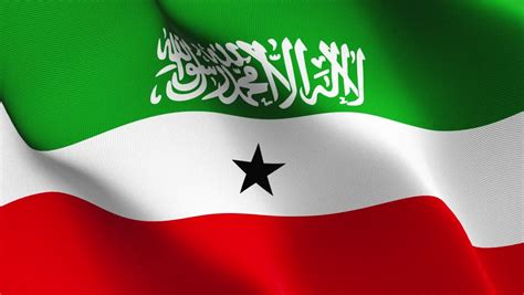 Flag Of Somaliland Stock Footage Video 3702929