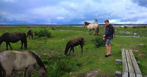 Draudzīgie dzīvnieki Engures ezera dabas parkā
