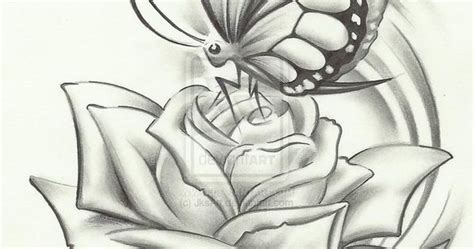 Pencil Drawings, Butterflies And Pencil On Pinterest