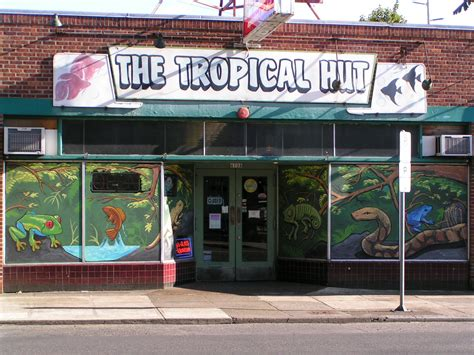 tropical hut portland tropical hut portland oregon reptiles pet store