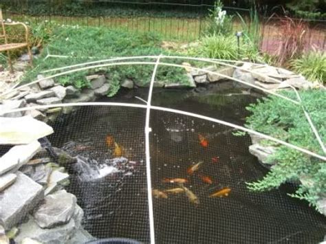 pond covers for winter diy pond winter leaf cover build for the home 4308