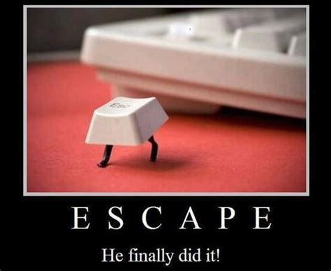 escape  finally   funny lover