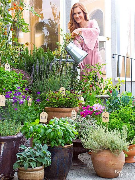 ideas  potted herb gardens  pinterest