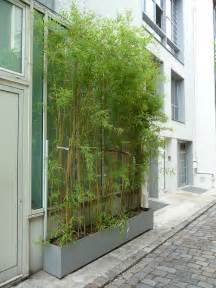 Rideaux Bamboux by Bambous Paris C 244 T 233 Jardin