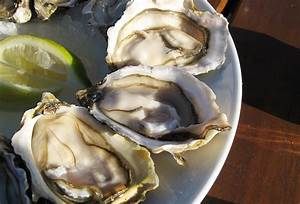 What's the difference between oysters, clams, mussels, and ...