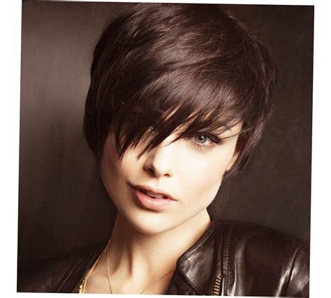 hairstyles  women  face  ellecrafts
