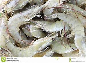 Fresh Raw Shrimp As Garnish In Cooking. Stock Photo ...