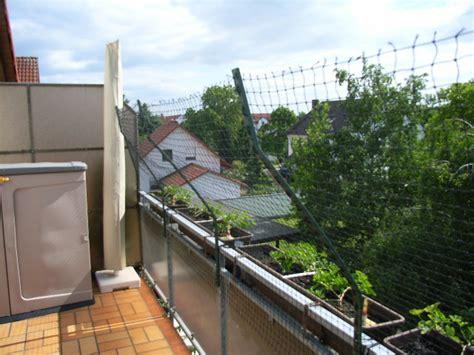 balkon sichern katze tips zum balkon balkon sichern katze mit katzennetz balkon