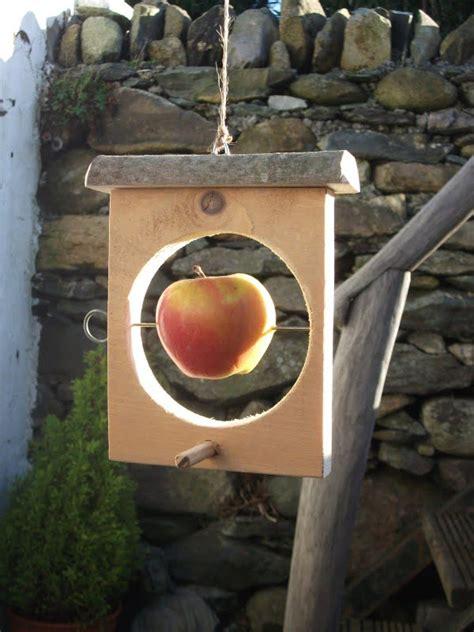 easy creative diy bird feeder ideas  lure wildlife