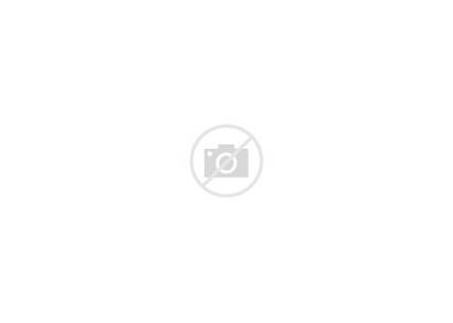 Fold Tri Brochure Template Psd Mockup Mockups