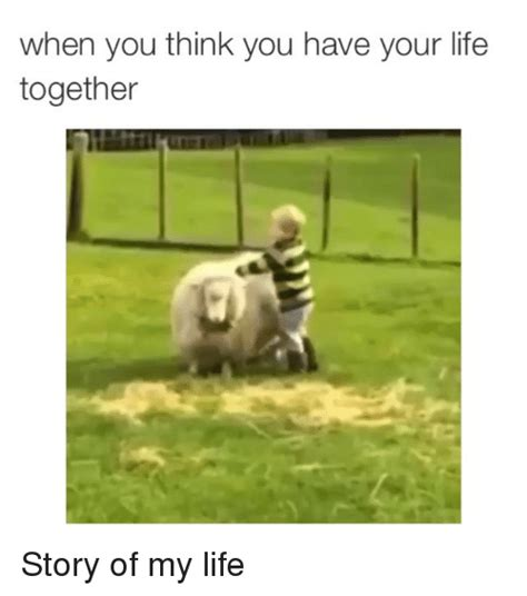 Memes On Life - when you think you have your life together story of my life funny meme on sizzle