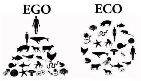 SAVE-Biosystem: ระบบนิเวศ ( Ecosystem )
