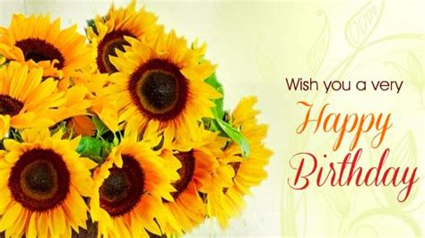 sunny birthday wishes  happy birthday ecards greeting cards