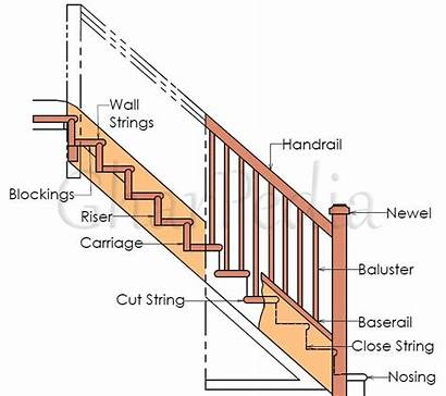 Stair Staircase Components Deck Parts Main Stairs