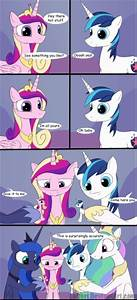 princess cadence and shining armour   Fluttershy and ...