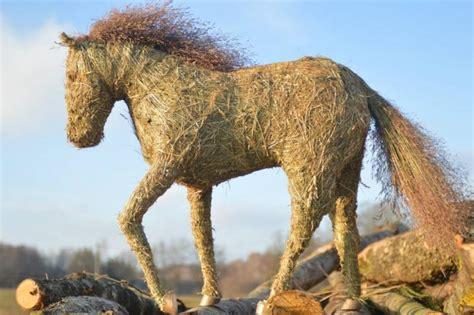 Salmu zirgs. | Horses, Animals, Cool stuff