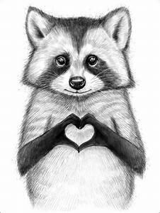 pin sparks auf raccoon in 2020 tierzeichnung